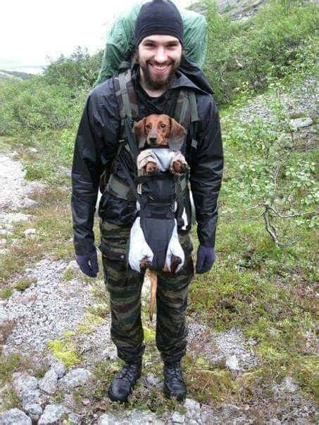 hot guy carrying  dachshund   baby carrier