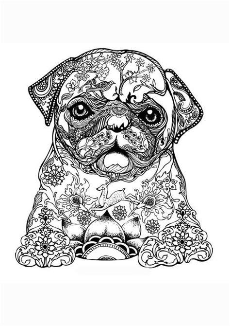Honden Kleurplaat Volwassenen by Kleurplaat Volwassenen Mopshond Kunst En Creativiteit