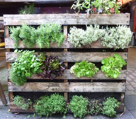 creative vegetable garden ideas