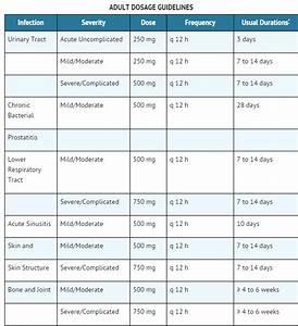 Medication Chart Ciprofloxacin Wikidoc