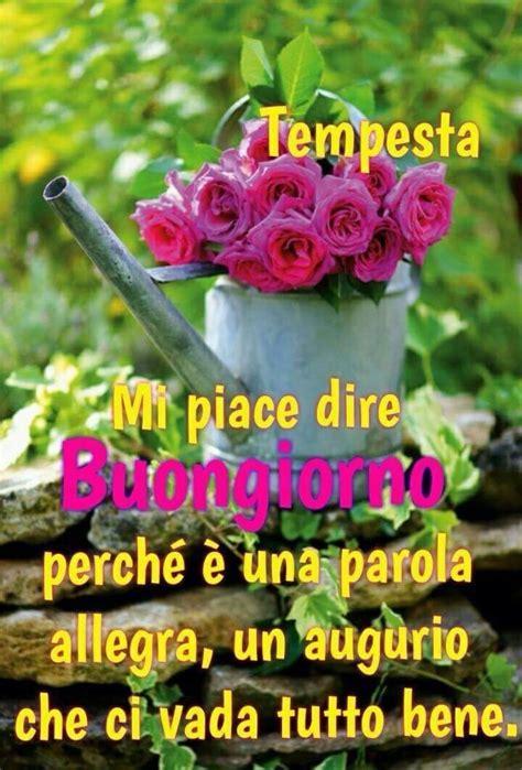 fiori e frasi buongiorno immagini con fiori e frasi fotowhatsapp it