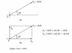 61 Tutorial Vector Diagram Bbc Bitesize With Video Tips