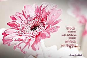 Bild Mit Spruch : fr hlingsblume mit spruch foto bild karten und kalender v gel fr hlingsblumen bilder auf ~ Markanthonyermac.com Haus und Dekorationen