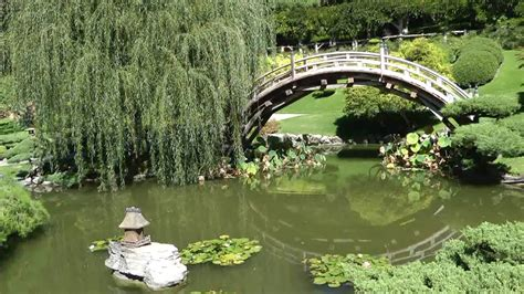 the huntington library japanese garden