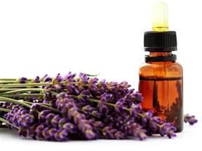 Lavender Oil Photos