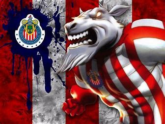 Image result for chivas
