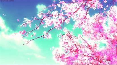 Anime Sky Clouds Cherry Google Blossoms Scenery