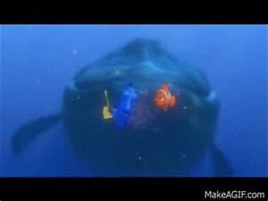 Finding Nemo - Dory Speaking Whale on Make a GIF