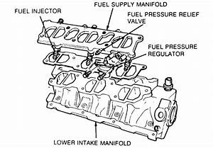 Fuel Supply Manifold And Injectors