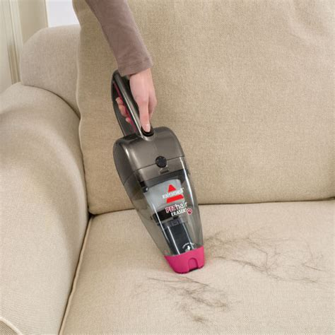 how to remove dog hair from sofa sofa maintenance with pets