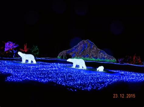 Zoo Lights Point Defiance by Point Defiance Zoo Aquarium Zoolights такома
