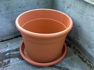 Terracotta Töpfe Groß : blumentopf pflanzentopf gro 80 cm terracotta in zirndorf kaufen und verkaufen ber private ~ Eleganceandgraceweddings.com Haus und Dekorationen
