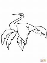 Coloring Stork Sitting Pages Cliparts Storks Wood Printable Drawing Library Clipart sketch template