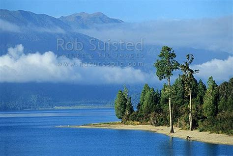 Early Morning On The Shores Of Lake Brunner Hohonu Range