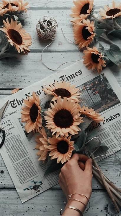 Aesthetic Insta Wallpapers Flowers Sunflower Visit