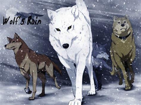 news   anime wolfs rain