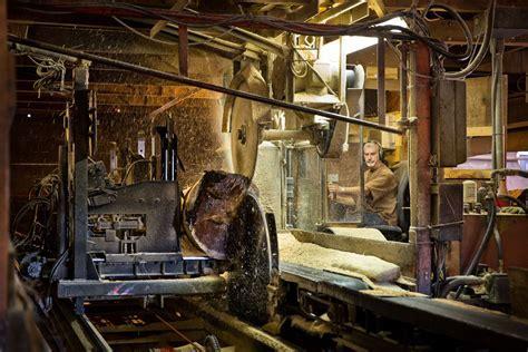Hammond Lumber Sawmill is First in Safety!   Hammond