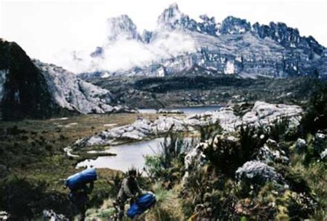 eksotisme taman nasional lorentz papua tempat wisata