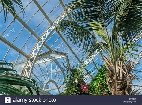 Victorian Glass Palm House With Tropical Plants And Trees