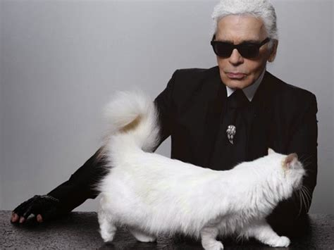 karl lagerfelds cat choupette   million  year