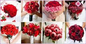 Hochzeit Bouquet aus roten Rosen eine Kombination der Optionen mit den anderen Farben, Fotos