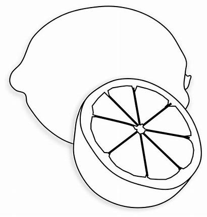 Lemon Clipart Fruit Yellow Coloring Pages Colouring