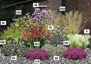 resultat de la recherche avec kit collection massif vivace With modele de rocaille de jardin 12 que planter sous un olivier detente jardin