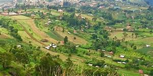 A Small Glimpse Into Village Life  U2014 Rural Living In