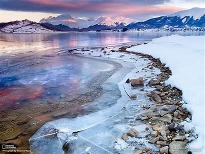 Geographic National Wallpapers Birds Desktop Background Winter