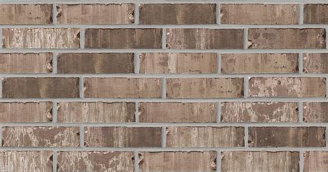 acme sable oak brick pinterest