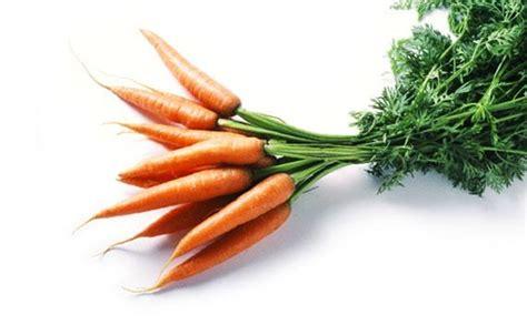 carotte bonduelle vous dit tout sur ce bon l 233 gume