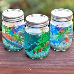 Make your own Jam Jar Aquariums
