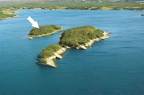 where can i buy an island for my kitchen are your ready to leave the brooder 2278