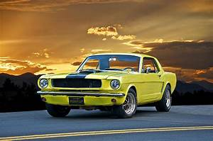 1966 Ford 'pony Up' Mustang Photograph by Dave Koontz