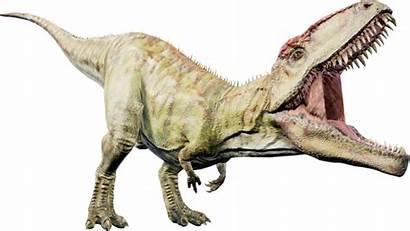 Giganotosaurus Evolution Dinosaur Jurassic Fandom Jurassicworld Wiki