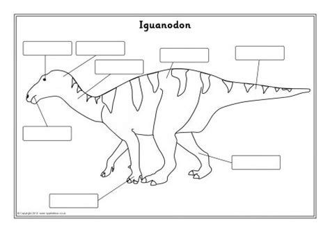 dinosaur labelling worksheets sb sparklebox