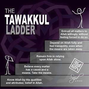 17 Best images ... Allah Tawakkul Quotes