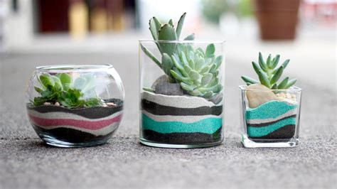 layered sand succulent planter youtube