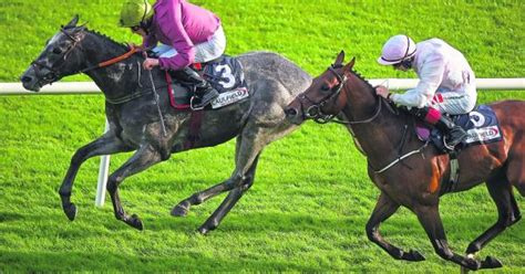 THE PUNTER'S EYE: Galway Races Day 5 Tips - Friday ...