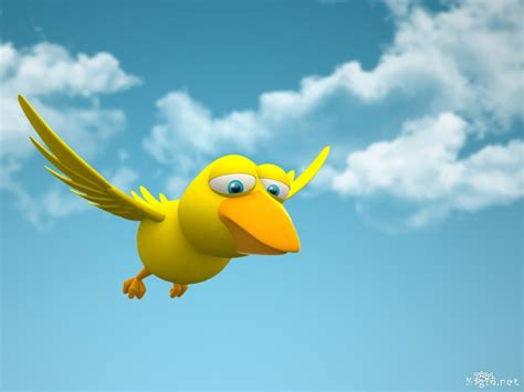 mettre sur le bureau 3d oiseau animaux fond d ecran photo drole 32 1024x768 pixel