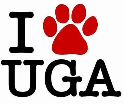 Georgia Bulldogs Uga Clipart Bulldog Ga Football