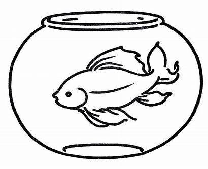 Goldfish Clipart Bowl Line Clip Graphics