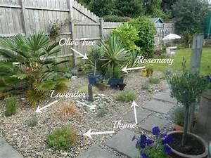 amenagement jardin sec eo83 jornalagora With marvelous quelles plantes pour jardin zen 0 quelles plantes pour son jardin sec idees et conseils utiles