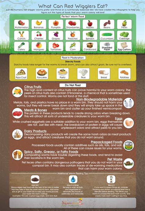 worms eat worm wiggler farm composting infographic wigglers compost bin food feeding magnet refrigerator bins vermicompost worry poster accessory starter