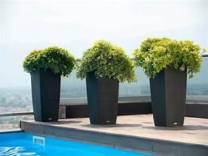 105 grand pot exterieur jardin conseil terrasse bois With chambre bébé design avec gros pot de fleur exterieur xxl