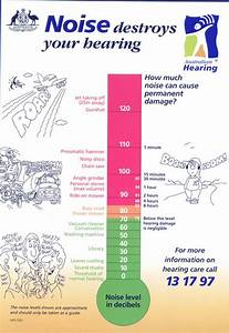 Science Diagram Of Noise