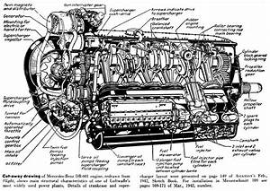 Engine Diagram Labeled In 2020