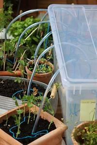 mein balkon bewasserungssysteme im test giessroboter teil 4 With französischer balkon mit bewässerungssysteme garten test