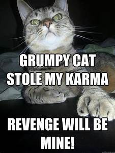 Grumpy cat stole my karma revenge will be mine! - Revenge ...