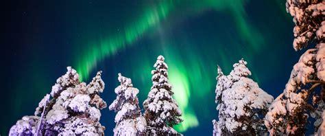 christmas northern lights holidays